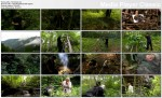 Ma��e?stwo w D�ungli / Man Woman Wild (2010) PL.TVRip.XviD / Lektor PL