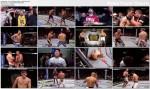 UFC 148: Silva vs. Sonnen II (07.07.2012) PL.TVRip.XviD / PL