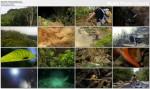 Wyprawa na Borneo / Expedition Borneo (2006) PL.TVRip.XviD / Lektor PL